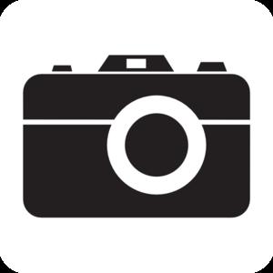 Visualizar todos Gouramis por fotos