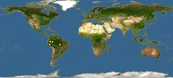 Corydoras pygmaeus-map