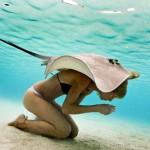 Fotógrafo põe modelos para nadar com arraias em ensaio submarino