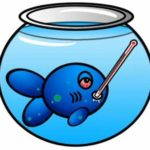 Tratamento de peixes e dosagens