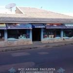 Lojas de aquarismo: Bixo d´água (Jundiaí – SP)