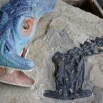 Fósseis revelam detalhes de criatura pré-histórica