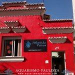 Lojas de aquarismo: Atlântida Peixes (Campinas – SP)