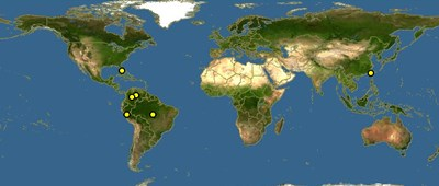 Osteoglossum-ferreirai-map